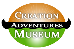 Creation Adventures Museum